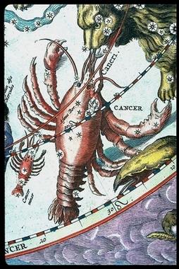 Cancer in Andreas Cellarius, Harmonia macrocosmica, 1661_