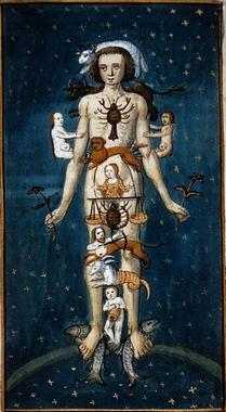 zodiacal man