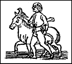 Sagittarius 15