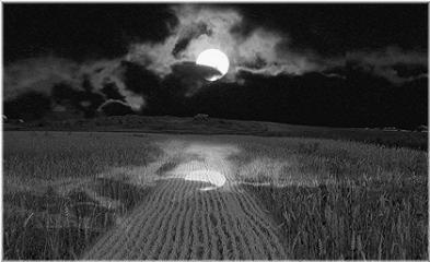 moon reliev