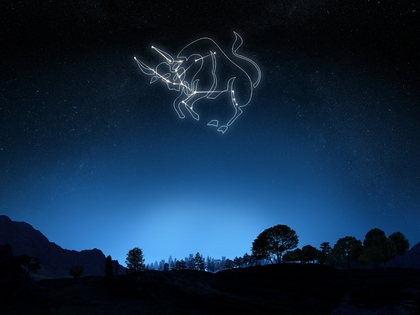 The large and clear Taurus Constellation