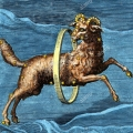 constellations-aries-eighteenth-century-hand-coloured-engraving-of-constellational-aries-the-ram-based-on-the-illumination-in-the-9th-cen