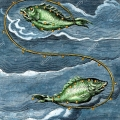 constellations-pisces-eighteenth-century-hand-coloured-engraving-of-constellational-pisces-the-fishes-based-on-the-illumination-in-the-9t