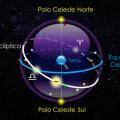 Polo+Celeste+Nortel